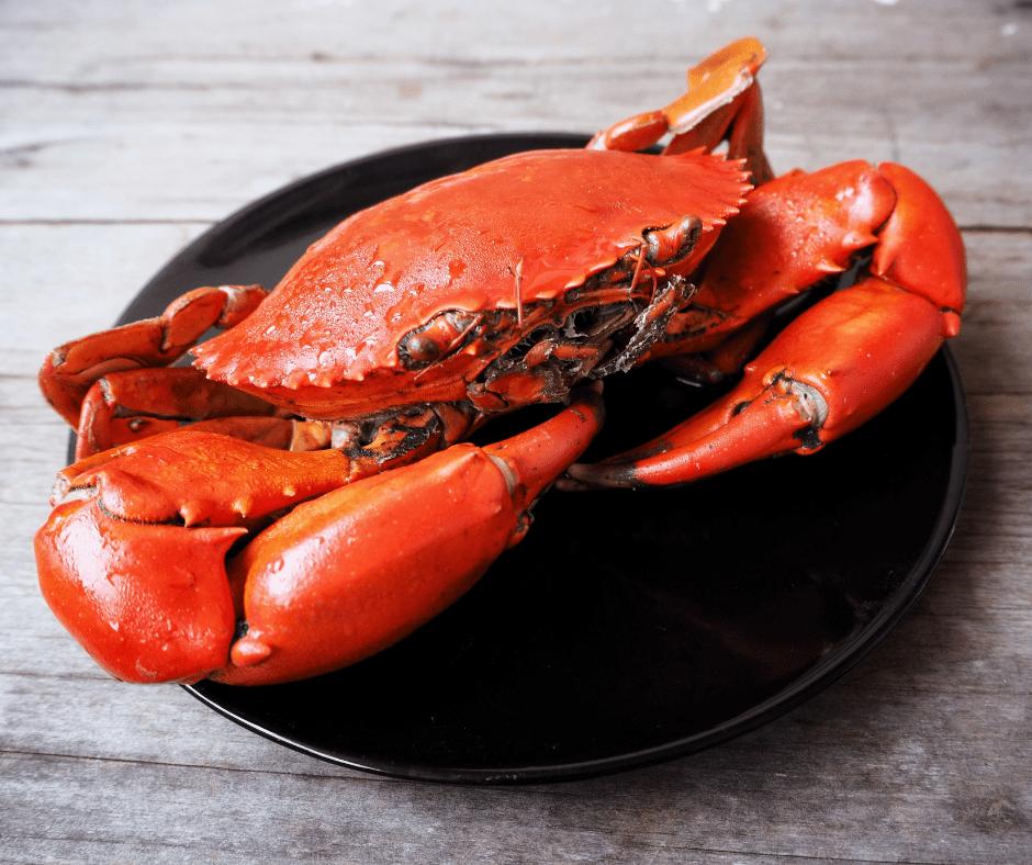 Fresh-Crabs